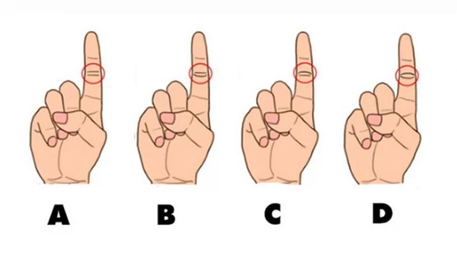 Nhìn vào đường chỉ tay ngón trỏ, đoán vận mệnh sang hèn-1
