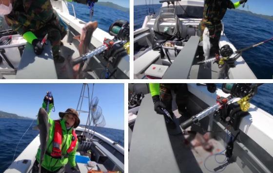 Tranh cãi Quỳnh Trần JP câu cá mập con ăn, cảnh máu me cũng đưa vào video-6