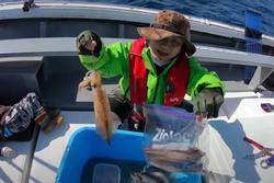 Tranh cãi Quỳnh Trần JP câu cá mập con ăn, cảnh máu me cũng đưa vào video