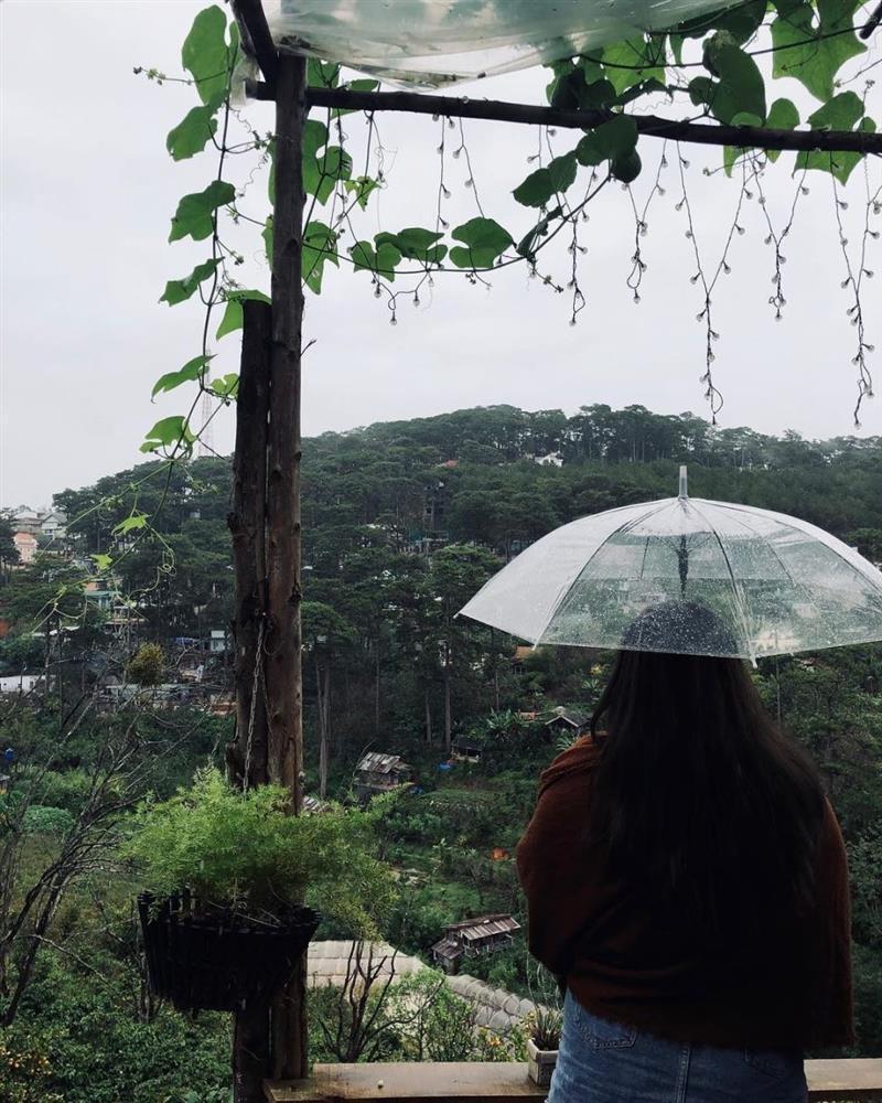 Hào hứng đi du lịch Đà Lạt, ai ngờ đang ngồi ăn thì thác nước chảy xối xả-2