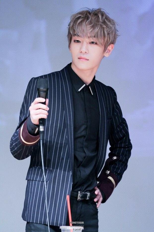 Sắp chạm đỉnh vinh quang lại đột ngột giã từ ngành giải trí, 5 idol khiến fan tiếc nuối-5
