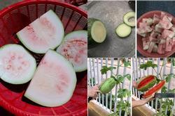 Những pha bổ quả cho thấy dưa hấu là loại trái cây 'bán đứng' con người nhiều nhất