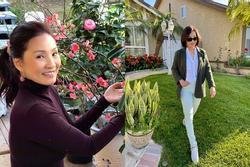 Biệt thự ngập hoa của Hồng Đào ở Mỹ