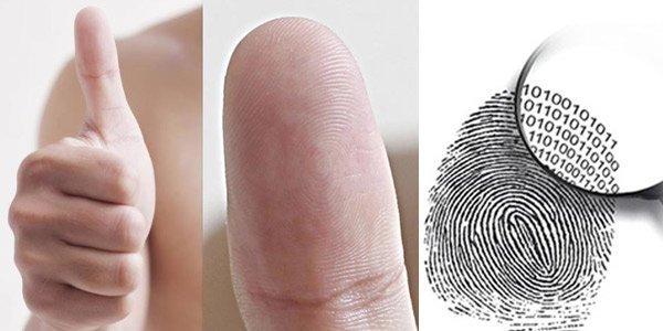 Nhìn vào ngón tay cái biết được tương lai làm quan hay làm lính-1