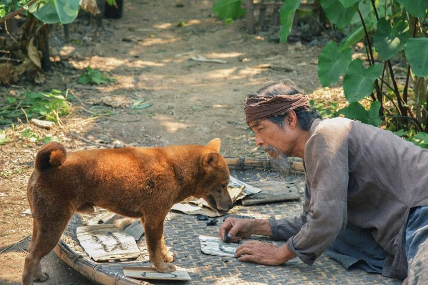Phim Việt đầu năm 2021: Thảm họa và ồn ào nối tiếp-5