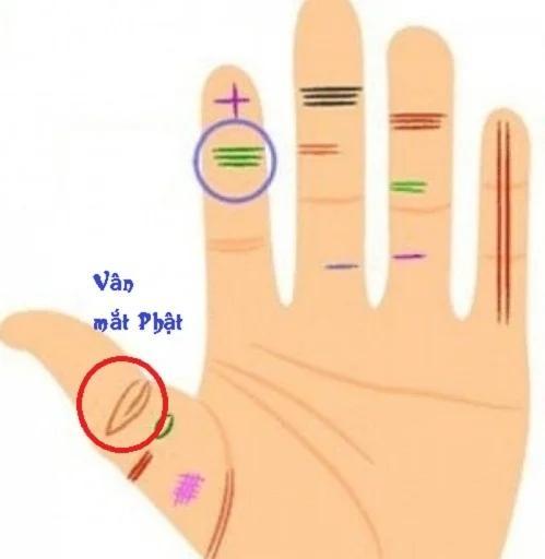 Có vân mắt Phật ở ngón tay này, cuộc đời bạn sẽ an nhiên, tự tại-1