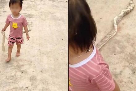 Cầm 'đồ chơi' tung tăng đường làng, bé gái khiến ai nấy hồn vía lên mây