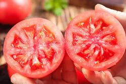 Mua cà chua, chọn quả phần núm có 5 hay 6 cánh?