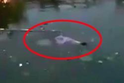 Phát hiện thi thể nữ sinh HV Nông nghiệp nổi giữa hồ trong trường
