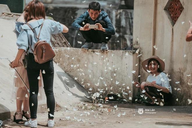 Choáng ngợp trước mùa bướm ở Quảng Bình đẹp đến nao lòng-3