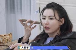 2 con từ chối theo Trương Bá Chi sang Thượng Hải