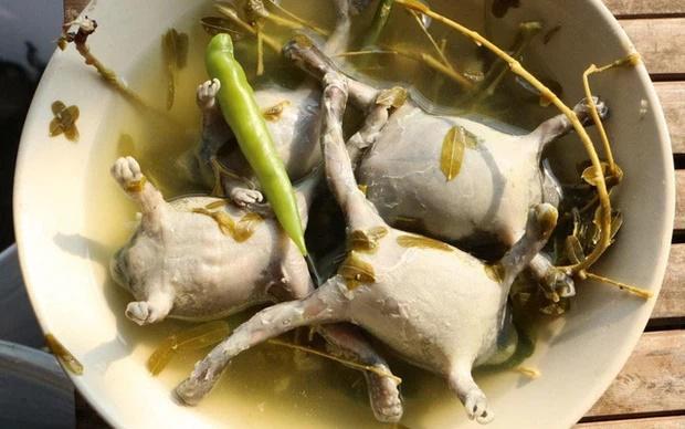 Món ăn siêu kinh dị của người Thái khiến dân mạng sốc nặng vì không tin có thể ăn được-4