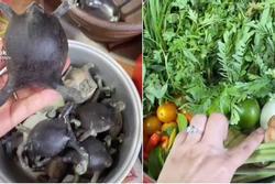 Món ăn siêu kinh dị của người Thái khiến dân mạng 'sốc nặng' vì không tin có thể ăn được