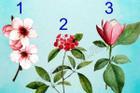 Bông hoa yêu thích nhất sẽ tiết lộ tài năng tiềm ẩn của bạn