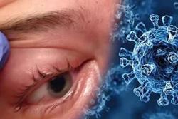 Ác mộng mới ở Ấn Độ: Bệnh nhân vừa khỏi Covid-19 thì tử vong vì loại virus khác