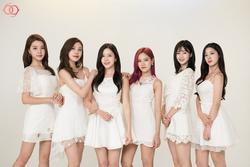 Nhóm nhạc Hàn Quốc tan rã sau 6 năm hoạt động mờ nhạt