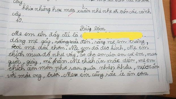Nhóc tiểu học làm văn bóc phốt mẹ, đọc câu chốt mới hiếm có khó tìm-1