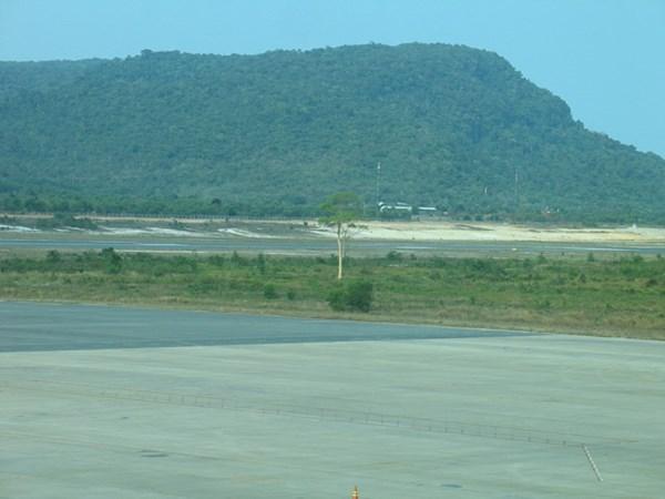Xôn xao chuyện cái cây duy nhất hiện mọc lẻ loi ở giữa sân bay Phú Quốc-2