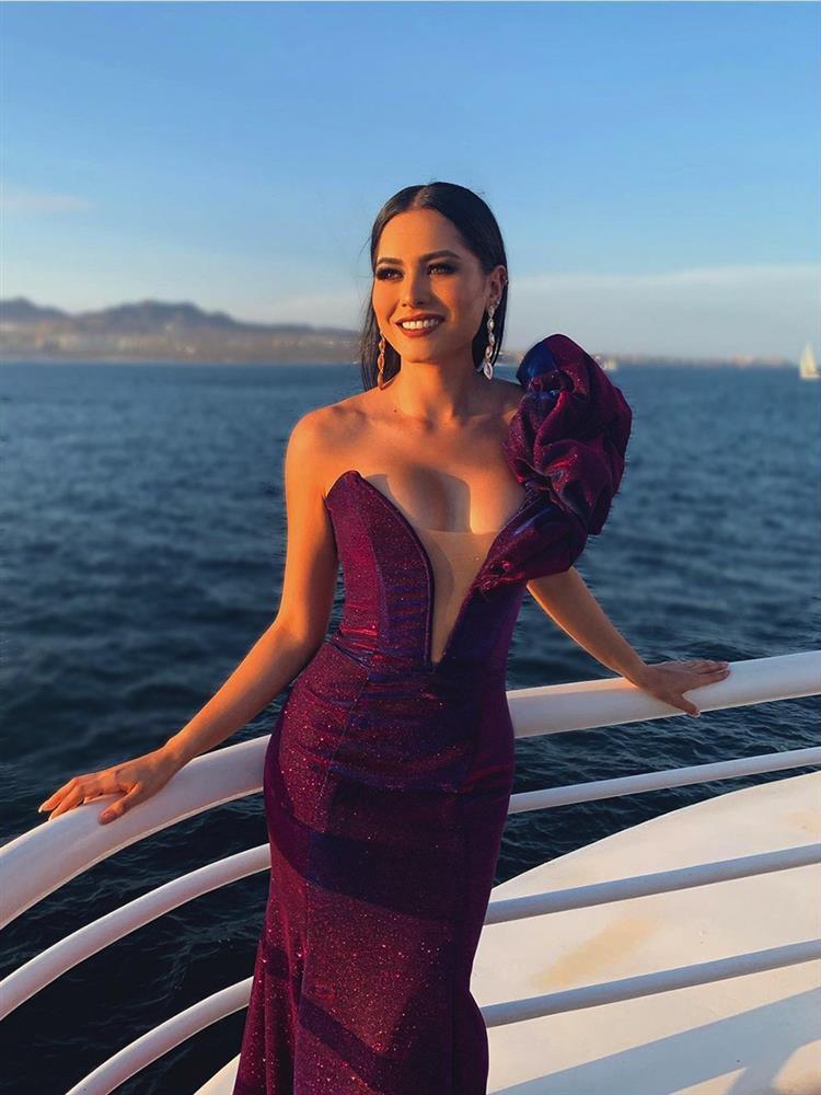 Tân Miss Universe Andrea Meza: Mỹ nhân cằm chẻ, thi đâu thắng đấy-10