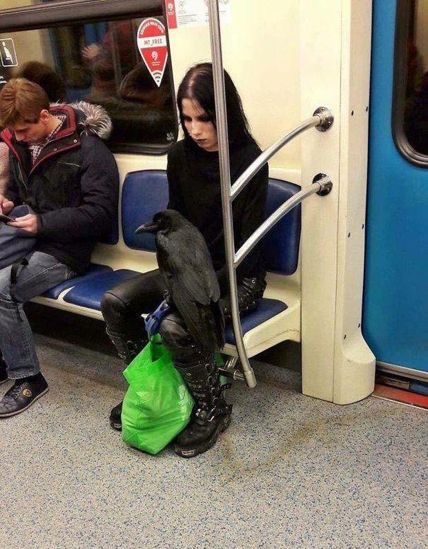 Những hình ảnh chứng minh tàu điện ngầm là nơi điều gì cũng có thể xảy ra-1