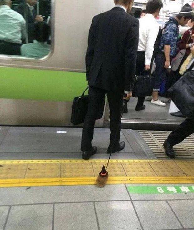 Những hình ảnh chứng minh tàu điện ngầm là nơi điều gì cũng có thể xảy ra-6