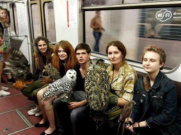 Những hình ảnh chứng minh tàu điện ngầm là nơi điều gì cũng có thể xảy ra-12