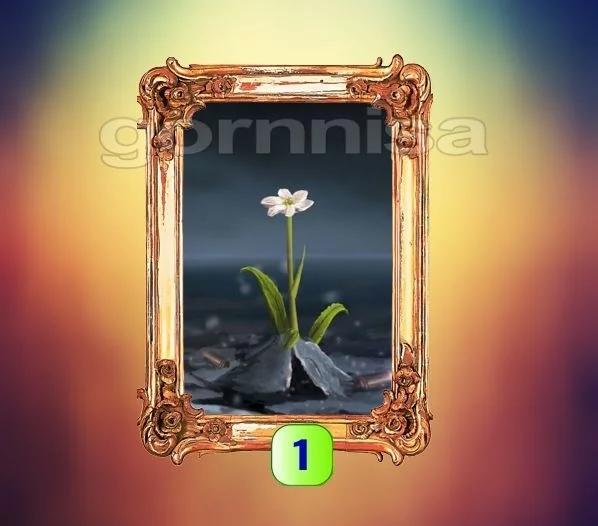 Chọn một lá bài Tarot để biết ngay lúc này, điều bạn cần làm là gì?-2