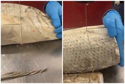 Đã tìm ra cách nhà máy cắt tỉa thịt cá cực thẳng, nhưng ai nhìn vào cũng 'lạnh gáy' vì lý do này