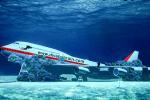 Bên trong xác máy bay bị đánh chìm để phát triển du lịch