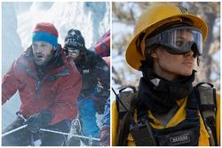 5 bộ phim về đề tài thảm họa choáng ngợp và đầy xúc động