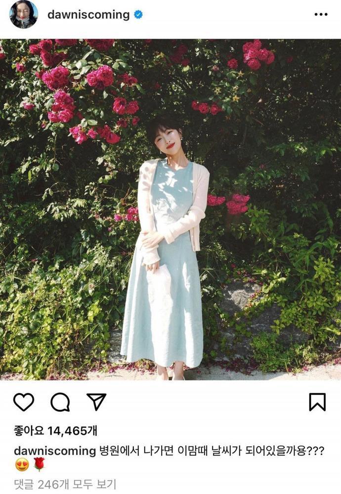 Beauty blogger xinh đẹp viết nhật ký nữ chiến binh chống ung thư qua đời-5