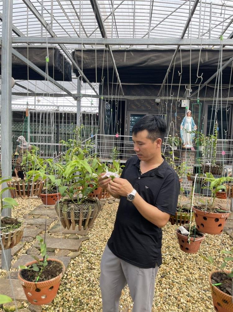 Chủ vườn lan Tam Đảo bật mí cách trồng lan cực chất cho người mới bắt đầu-3