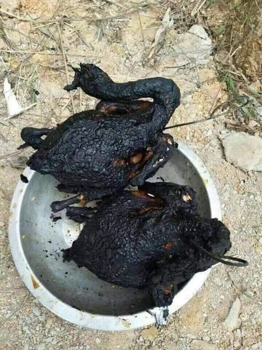 Bày đặt làm gà nướng nhưng thành phẩm lại đen như tiền đồ chị Dậu-6