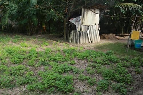 Sự thật gia cảnh khó khăn của Hồ Văn Cường mà dân mạng xôn xao-4