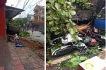 Khoảnh khắc xe đầu kéo lao lên vỉa hè, 'quét' hàng chục xe máy, húc đổ cây xanh