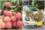 Cặp đôi Lục Ngạn chơi trội với xe hoa được làm từ đặc sản 'cây nhà lá vườn'
