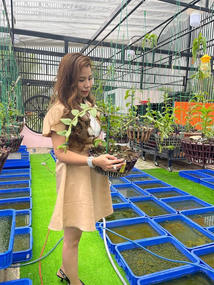 Chăm sóc lan kỳ công theo cách của bà chủ vườn ở Đồng Tháp-1