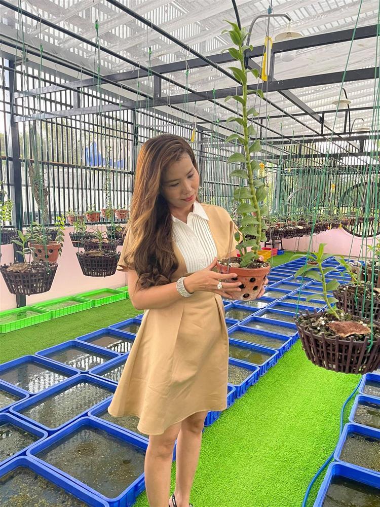 Chăm sóc lan kỳ công theo cách của bà chủ vườn ở Đồng Tháp-2