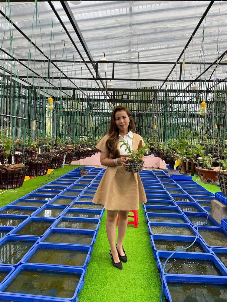 Chăm sóc lan kỳ công theo cách của bà chủ vườn ở Đồng Tháp-3