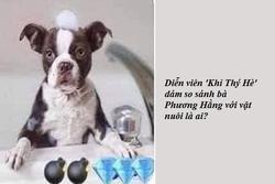Diễn viên 'Khỉ Thý Hè' dám so sánh bà Phương Hằng với vật nuôi là ai?