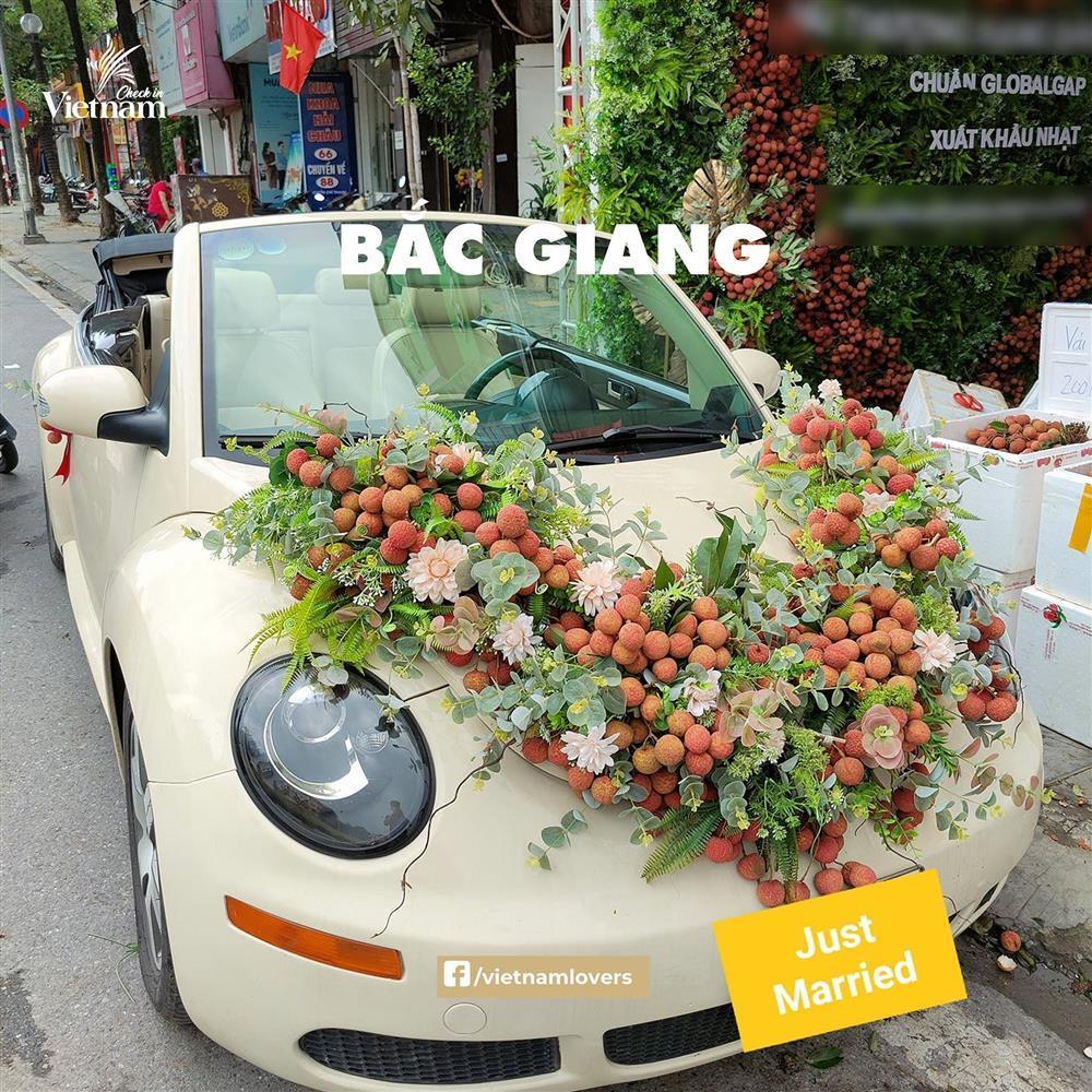 Sau hoa cưới vải thiều, dân mạng chế loạt xe dâu toàn đặc sản quê hương-1