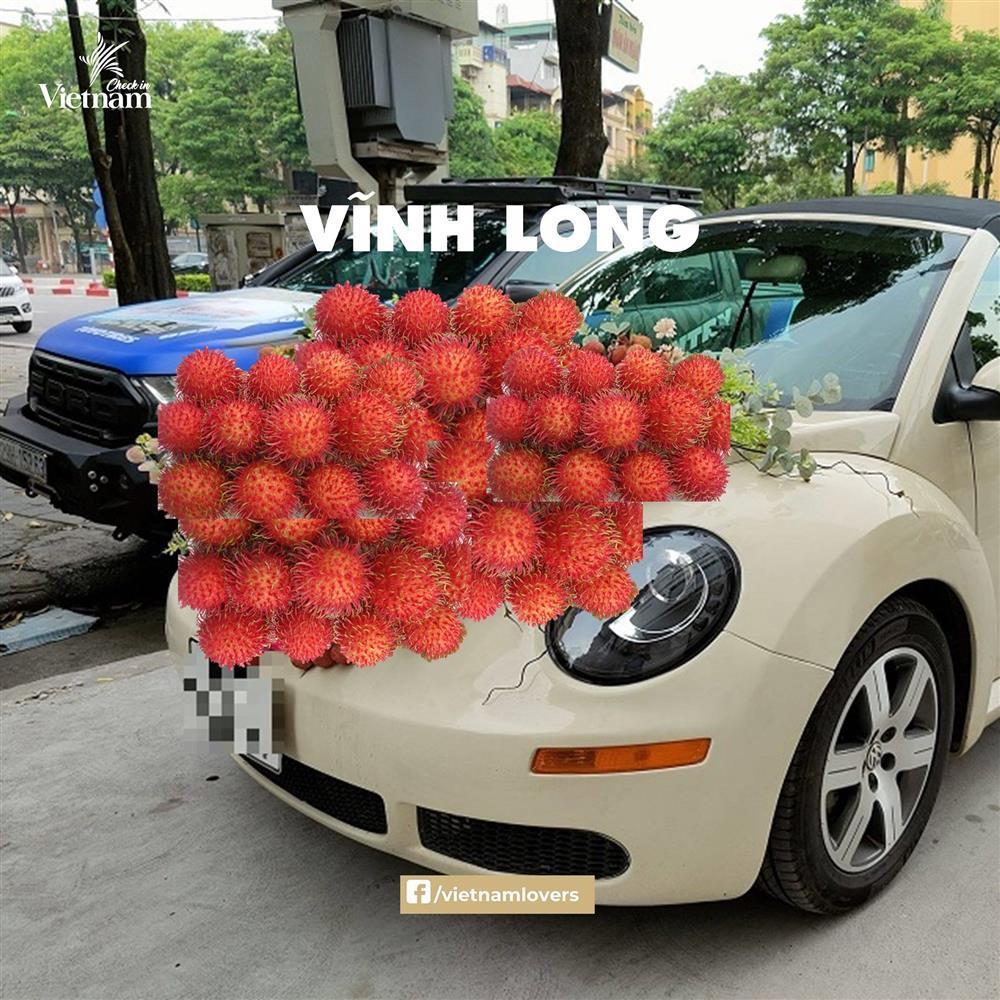Sau hoa cưới vải thiều, dân mạng chế loạt xe dâu toàn đặc sản quê hương-7