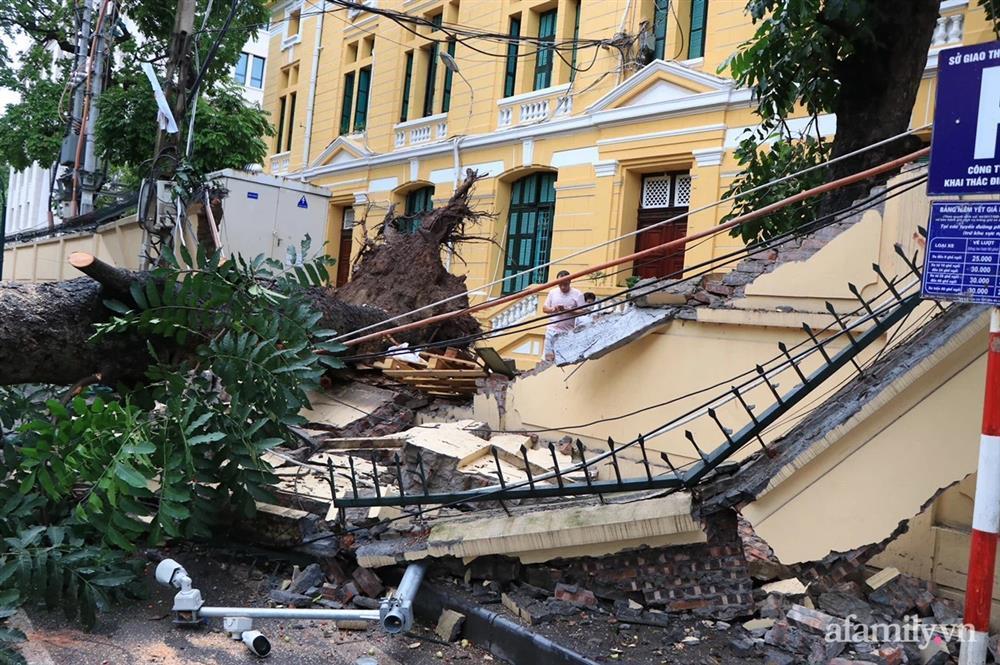 Hà Nội: Cây cổ thụ hàng chục năm tuổi bất ngờ bật gốc sau trận gió lớn, đè sập tường Tòa án nhân dân tối cao-1