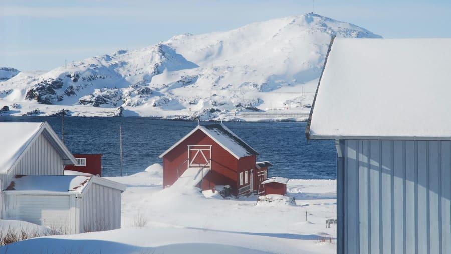 Người phụ nữ một mình đến Bắc Cực sống để trốn dịch-4