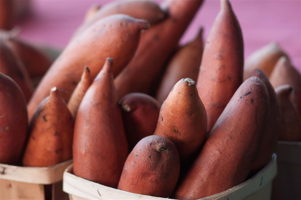 Rosé, Song Hye Kyo ép cân bằng 1 món ăn siêu hạt dẻ phổ biến ở Việt Nam!-8
