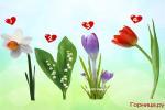 Chọn một bông hoa 'soi' độ dễ thương của bạn ở mức nào?