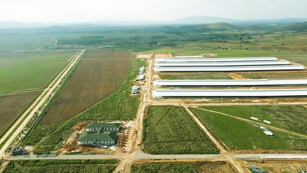 Vinamilk 9 năm liên tiếp vào Top 50 doanh nghiệp niêm yết tốt nhất Việt Nam-2