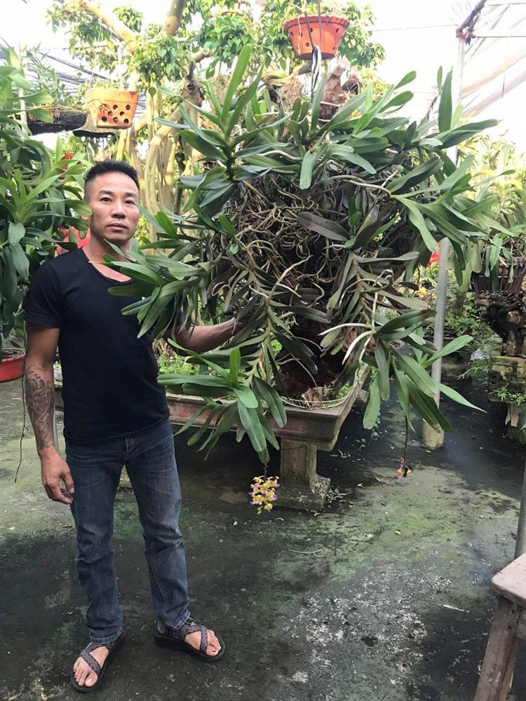 Mối duyên gần 10 năm của ông chủ vườn 8x với hoa lan-1