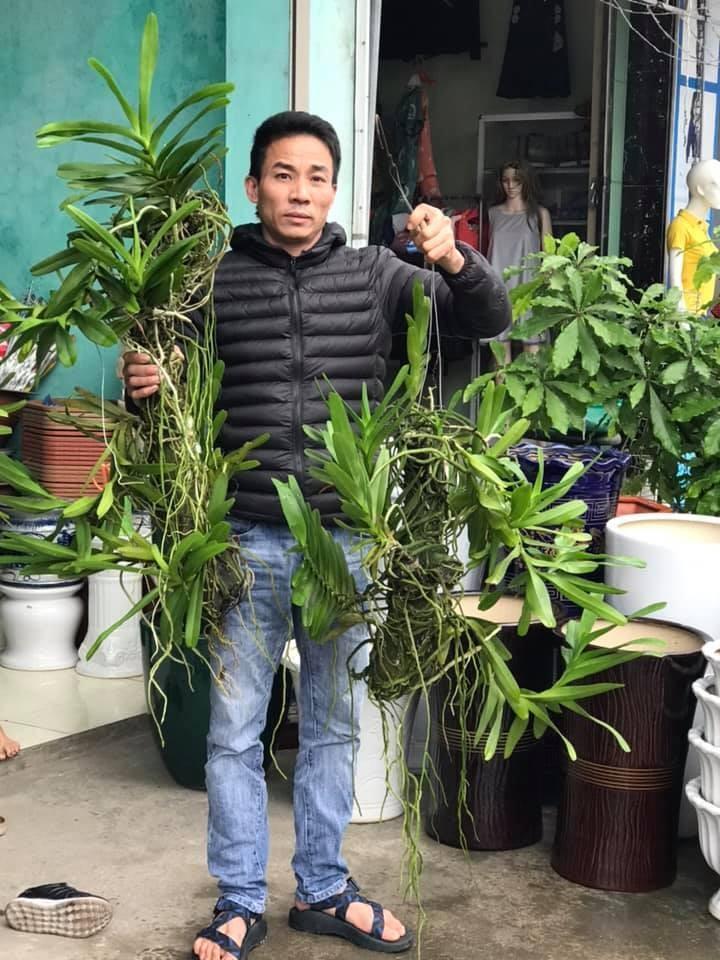 Mối duyên gần 10 năm của ông chủ vườn 8x với hoa lan-4