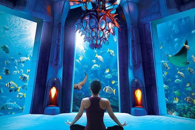 5 khách sạn hạng sang nằm dưới mặt nước biển-2